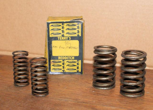 P & M Red Panther Valve Spring Set 250cc